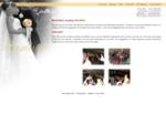 Disco-Mobile 20-100 - Mariage - Service - DJ - Éclairage - Drummondville