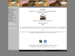 21- Frettes , Lutherie Artisanale , Fabrication de Guitare Accoustique et Electrique .