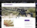 .223 Remington   Un Blog sur le Tir Longue Distance