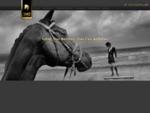2M2 HORSES - Hem