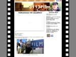 3113film