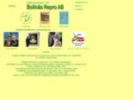 Bollnäs Repro AB, digitaltryck, prepress, Giclée Fine Art digital grafik och nyckelring med 3D-bi