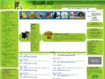 Челябинский интернет-магазин зоотоваров, корм для кошек и корм для собак, витамины и аксессуары