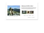 - Cocker Spaniel - Blue Roan Sobel Liver Roan Avel för Uppfödare och Kennel