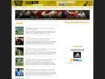 David Villa Web Oficial