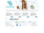 Siti internet Brescia - Software gestionali - 8volante Orzinuovi