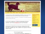 Åseda Lenhovda brukshundklubb - En till WordPress-webbplats