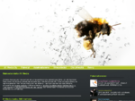 Mainostoimisto Turku - Kaarina - graafinen suunnittelu, tv-mainonta, animaatio - digimediatuotanto