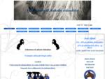 aaholm rideudstyr og kattepension