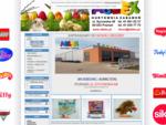 Internetowa hurtownia zabawek dla dzieci - Ablex hurt Poznań