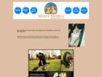 Absent Minders - Melbourne Pet Minders