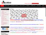 Accabus — Σφαιρική Συμβουλευτική Επιχειρήσεων | Λογιστικό Γραφείο - Φοροτεχνικά