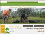 ACEV jardinier paysagiste 77 creation espaces verts idf plantation haies pelouse entretien jardin am