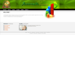 AchieversNet Consulting Services