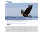 Broker ubezpieczeniowy - Adler Brokers Group