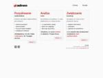 adneo - firma zajmująca się promocją w internecie, analizą ruchu na stronie oraz optymalizacją konw