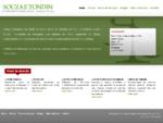 Souza e Tondin - Sociedade de Advogados