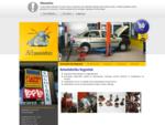 Prodaja akumulatorjev, popravila alternatorjev in zaganjalnikov, avtoelektričar
