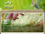 Zeliščna bio kmetija Ekološka kmetija Grilc Pridelava in prodaja zdravilnih zelišč - Zeliščna bi