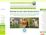 אילוף כלבים - כלביית אפיקים