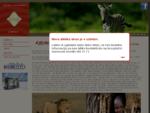 Afrika | Safari Kenija in Tanzanija | Rajski Zanzibar - Liberty Int.