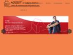 Assistenza caldaie Roma assistenza tecnica autorizzata Sounier Duval e Cosmogas Roma | assistenza c