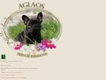 AGLAOS French Bulldogs - bouledogue francais