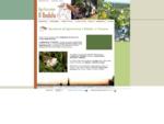 Agriturismo Il Badalo Riparbella casa Toscana vacanze Costa degli Etruschi