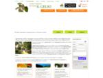 Agriturismo campagna Toscana appartamenti in fattoria Toscana mare Rosignano | Agriturismo Il Gelso