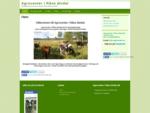 Agrocenter i Råne älvdal | Ett bygdebolag inom gröna näringar i Råne älvdalsområdet