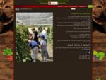 קטיף פטל עצמי. אתר קטיף פטל עצמי הקיים משנת 1997 בגדרה, האתר של קטיף פטל עצמי פתוח לכל אוהבי הפירו
