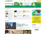 AirijaOnline. lt lietuvių bendruomenės tinklalapis Airijoje