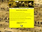 Akademia Gitary - profesjonalna szkoła muzyczna w Rzeszowie, jazz, blues, rock, improwizacja, h