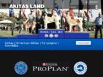 Akitas Land - AMERICAN AKITA , AKITA PUPPY FOR SALE