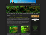 Akvaristickའportà¡l - atlas ryb a rostlin, galerie, fà³rum, diskuze, rady a inzerce, nà¡vody