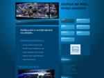 Realizace akvárií na zakázku. Čištění a servis akvárií.  Sladkovodní a mořská akvária.