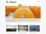 Naranjas, clementinas y mandarinas