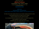 Alberto Forlenza Pittura Arte Madonnari