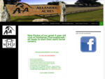 Allander Acres | Breeders of Quality Holsteiner Based Sport Horses