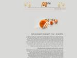 בניית אתרים | ALLsite