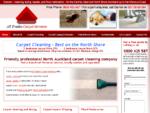 Carpet cleaning Auckland, Carpet cleaners North Shore Albany
