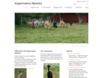 Angermanna Alpacka