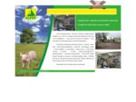 Firma Handlowa ALPEK Alicja Bielecka. Kompleksowe zaopatrzenie zakładów przetwórstwa mięsnego na te