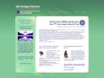 Safe Amalgam Removal - St Leonards Holistic Dental Care