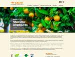 AMASOL importer warzyw i owocà³w
