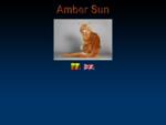 Meino meÅ¡kÄ-nų kačių veislynas - Amber Sun