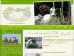 Allevamento bovini razza piemontese F. lli Ameglio - Altavilla Monferrato (AL) -