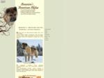 Amenira's American Akitas