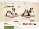 Do sprzedania rasowe szczeniÄta beagle i owczarek szetlandzki z hodowli. Beagle hodowla - sprzedam
