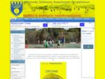 Αθλητικός Σύλλογος Αναγέννηση Πετραλώνων. Ομάδες ακαδημίες καλαθοσφαίρισης Basketball